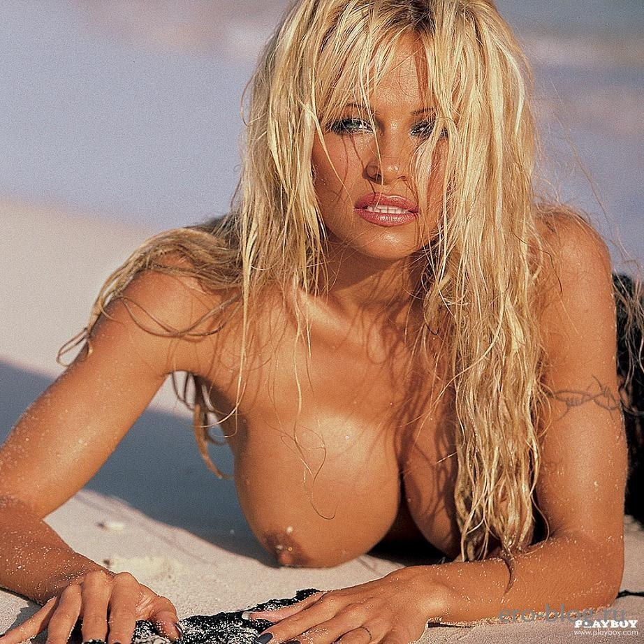 Pamela anderson's nude tits